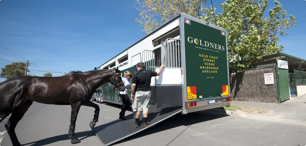 The Gold Standard In Horse Transport Research